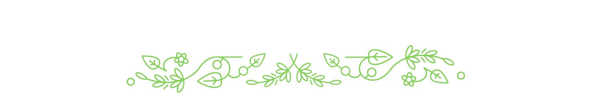 Diseño de elementos florales decorativos empleados en las aplicaciones de marca