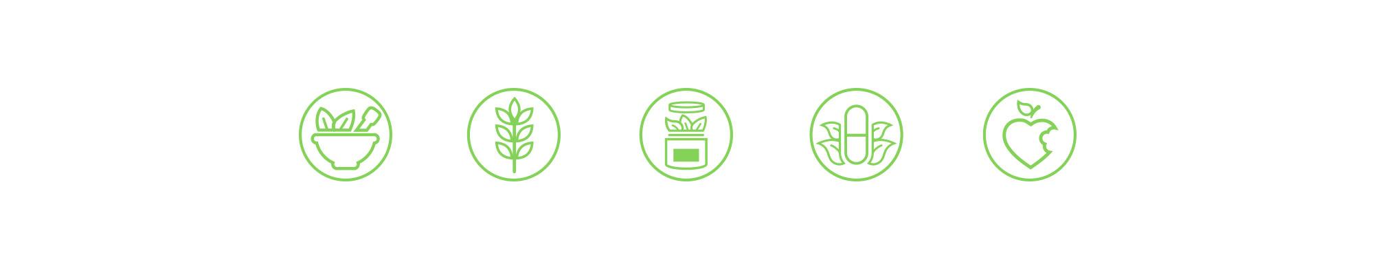 Diseño de los iconos para las diferentes categorías de productos de la tienda